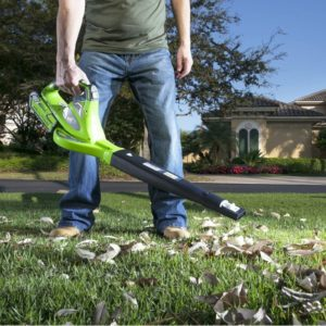 best-variable-speed-cordless-leaf-blower